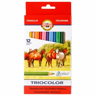 Buntstifte Triocolor  Jumbo Schul- Farbstifte 5,6 mm Mine  12er Pack